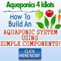 Aquaponics 4 Idiots